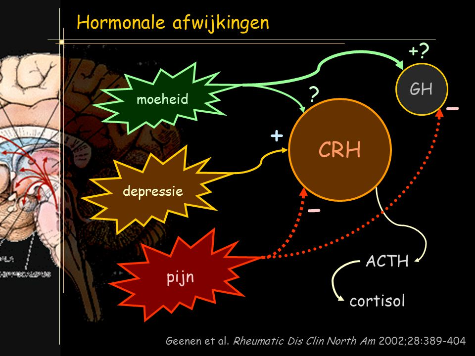 - - + + CRH Hormonale afwijkingen + GH pijn ACTH cortisol moeheid