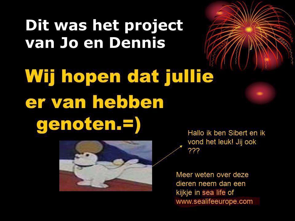 Dit was het project van Jo en Dennis