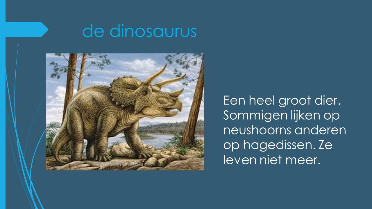 de dinosaurus Een heel groot dier. Sommigen lijken op neushoorns anderen op hagedissen.