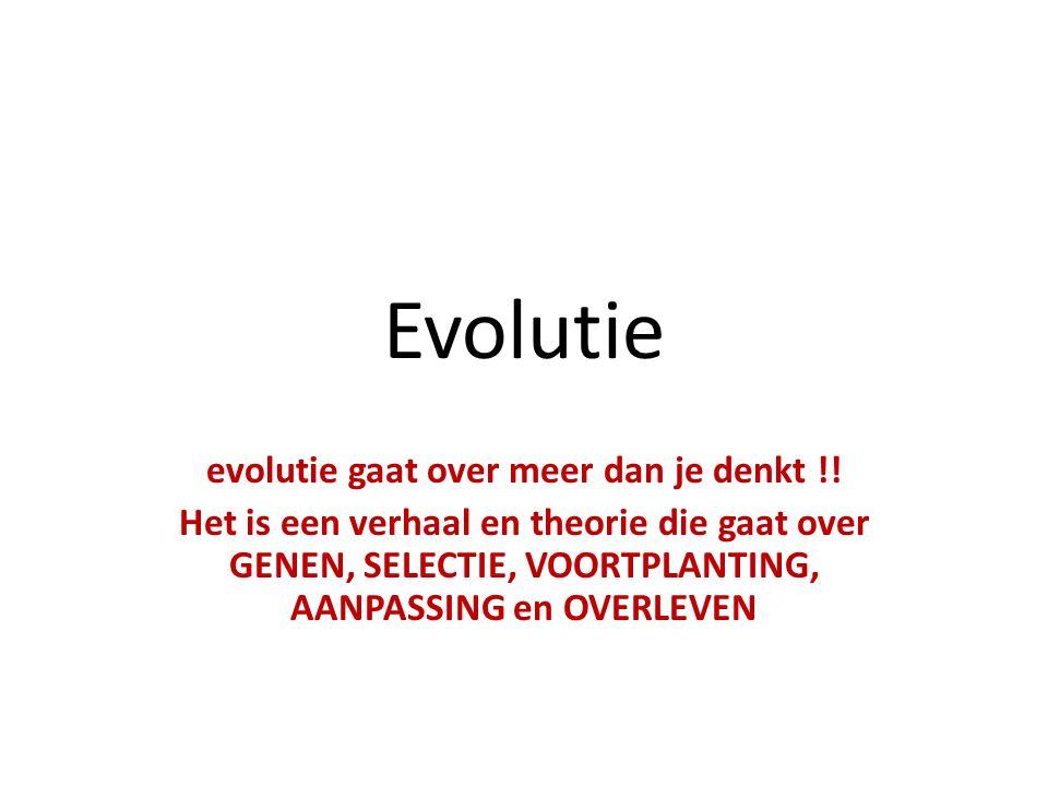 evolutie gaat over meer dan je denkt !!