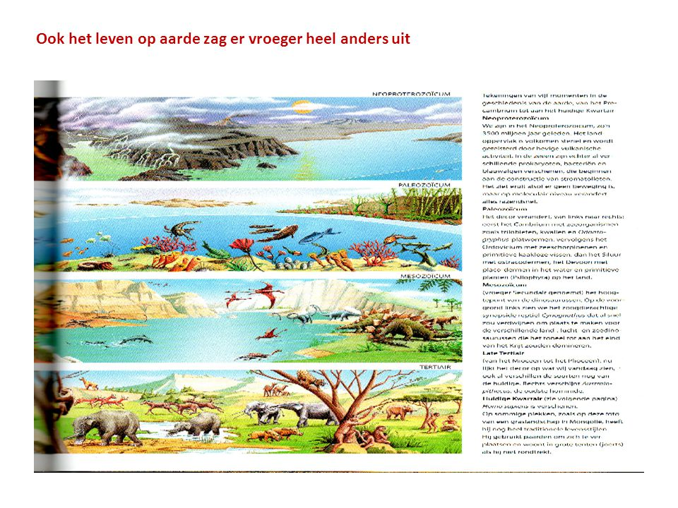 Ook het leven op aarde zag er vroeger heel anders uit