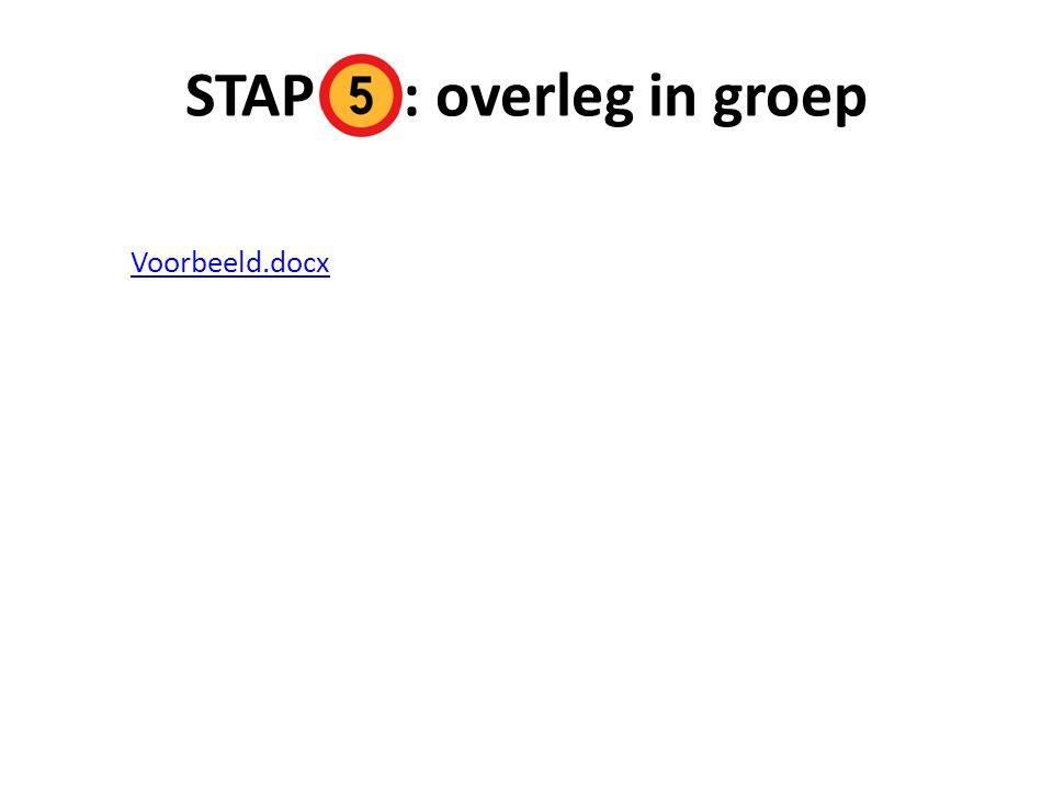 STAP : overleg in groep Voorbeeld.docx