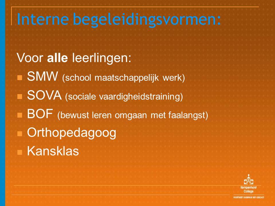Interne begeleidingsvormen: