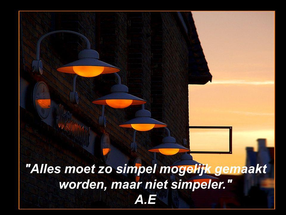Alles moet zo simpel mogelijk gemaakt worden, maar niet simpeler.