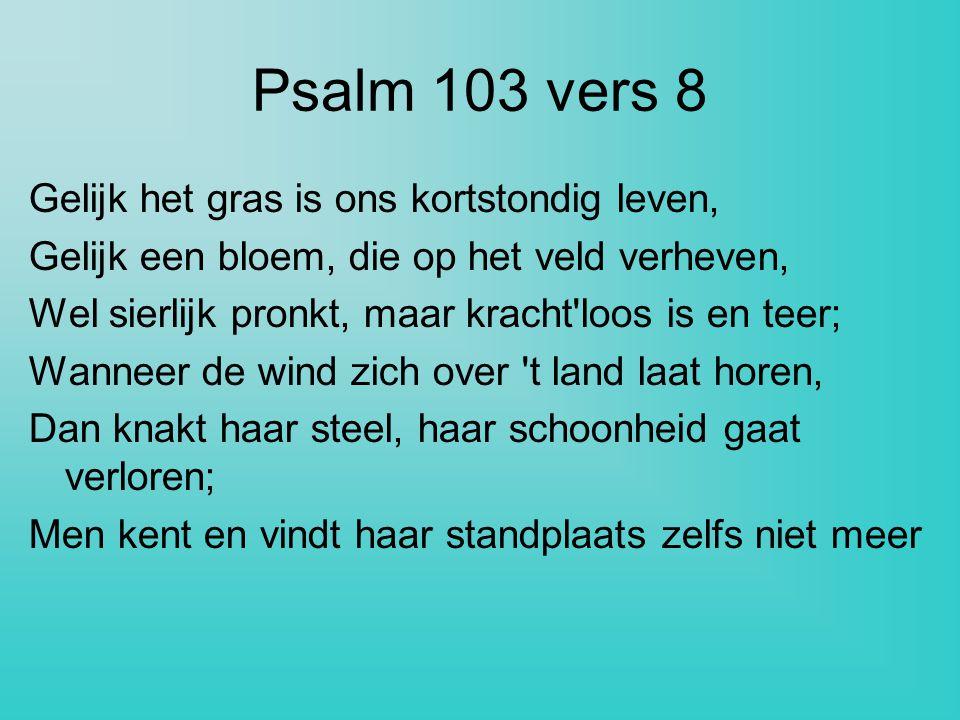 Psalm 103 vers 8 Gelijk het gras is ons kortstondig leven,
