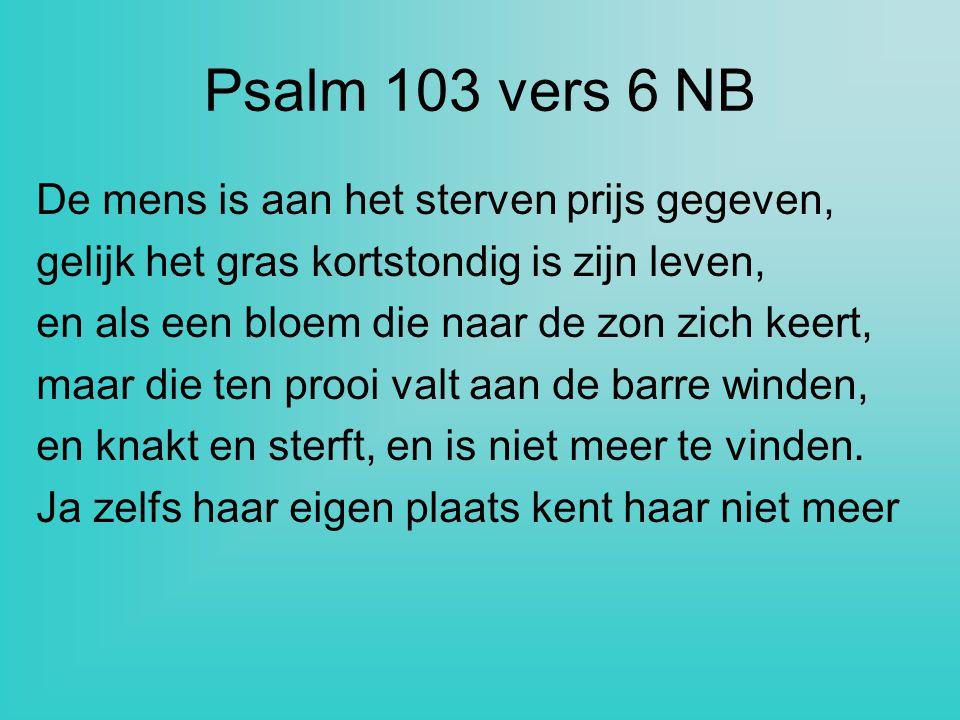 Psalm 103 vers 6 NB De mens is aan het sterven prijs gegeven,
