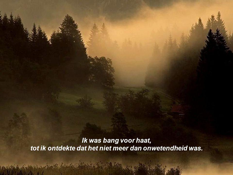 tot ik ontdekte dat het niet meer dan onwetendheid was.