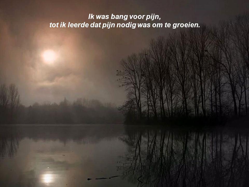 tot ik leerde dat pijn nodig was om te groeien.