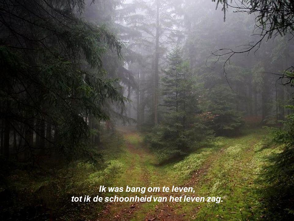 tot ik de schoonheid van het leven zag.