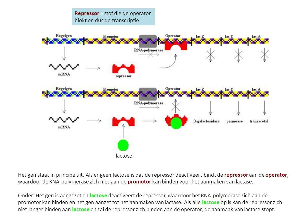 Repressor = stof die de operator blokt en dus de transcriptie lactose