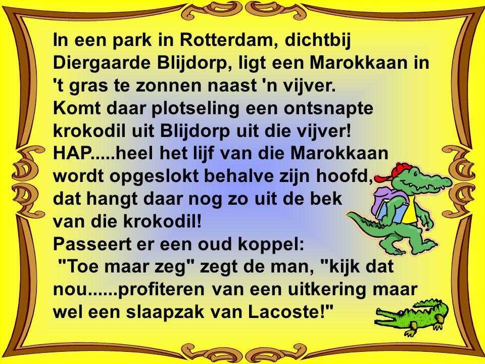 In een park in Rotterdam, dichtbij Diergaarde Blijdorp, ligt een Marokkaan in t gras te zonnen naast n vijver. Komt daar plotseling een ontsnapte krokodil uit Blijdorp uit die vijver! HAP.....heel het lijf van die Marokkaan wordt opgeslokt behalve zijn hoofd, dat hangt daar nog zo uit de bek