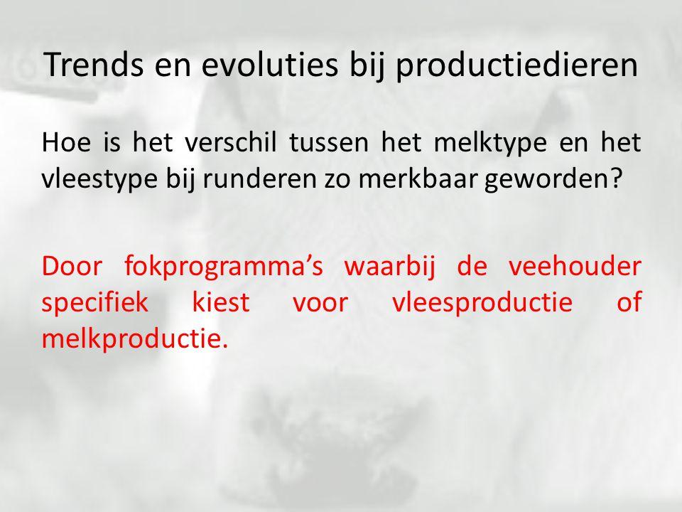 Trends en evoluties bij productiedieren