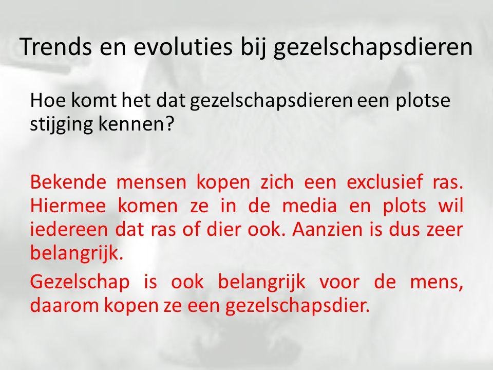 Trends en evoluties bij gezelschapsdieren