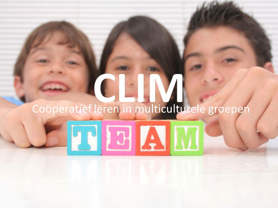 Coöperatief leren in multiculturele groepen