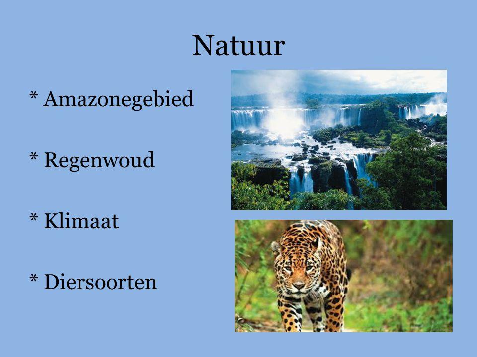 Natuur * Amazonegebied * Regenwoud * Klimaat * Diersoorten