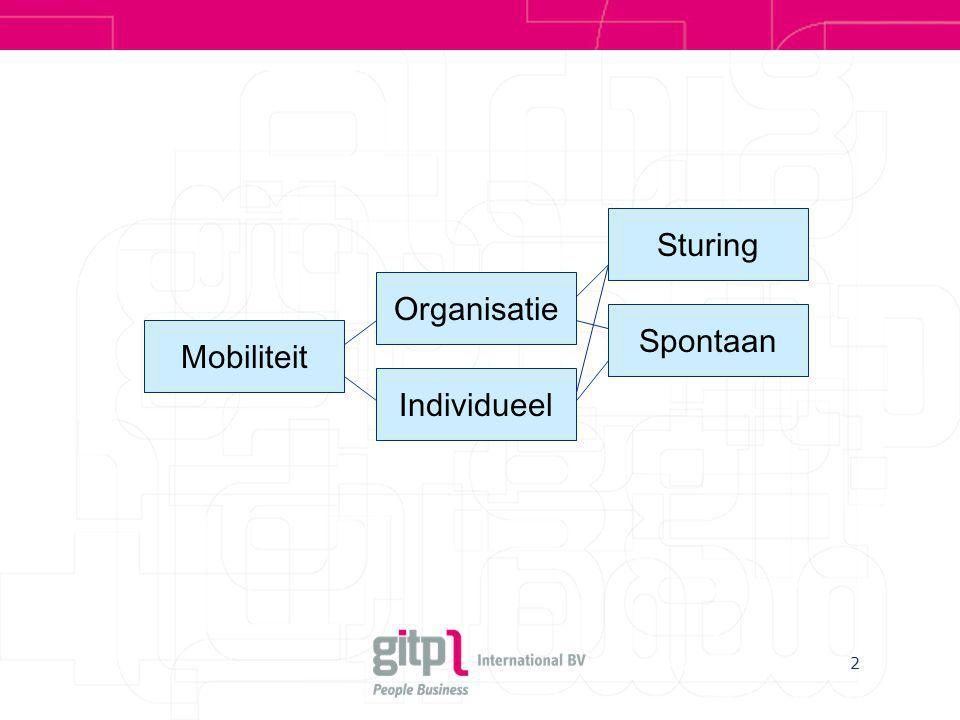 Sturing Organisatie Spontaan Mobiliteit Individueel