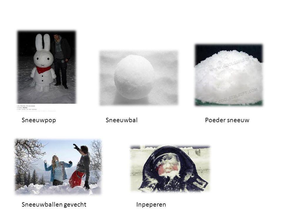 Sneeuwpop Sneeuwbal Poeder sneeuw