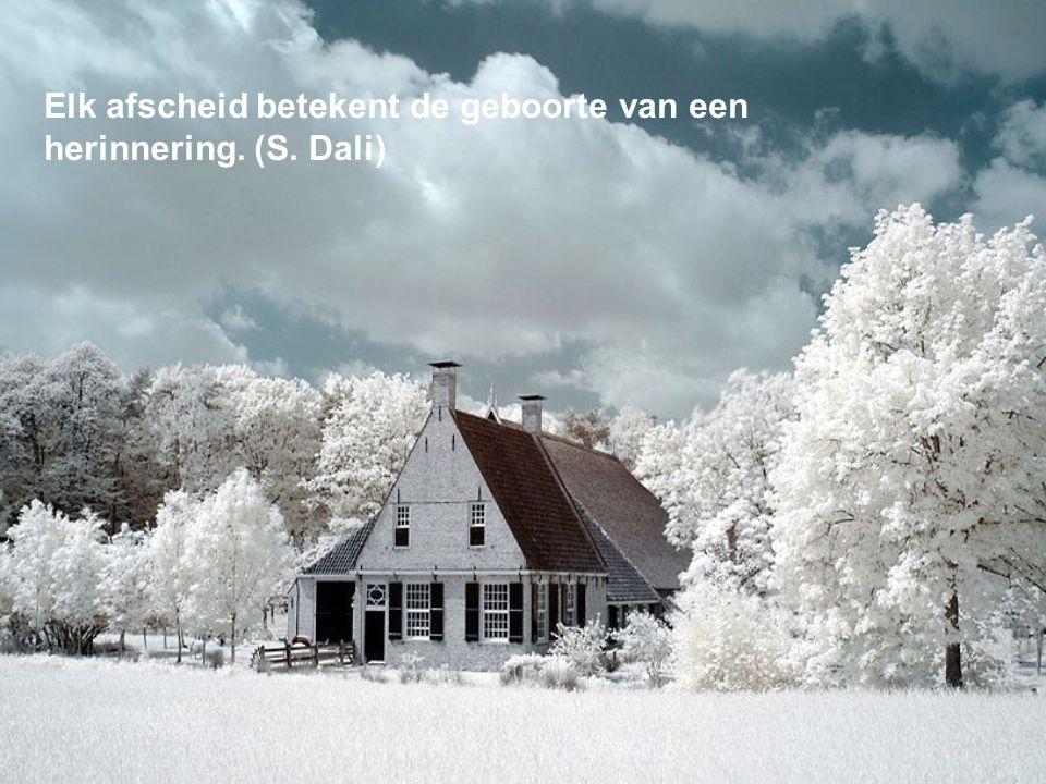 Elk afscheid betekent de geboorte van een herinnering. (S. Dali)