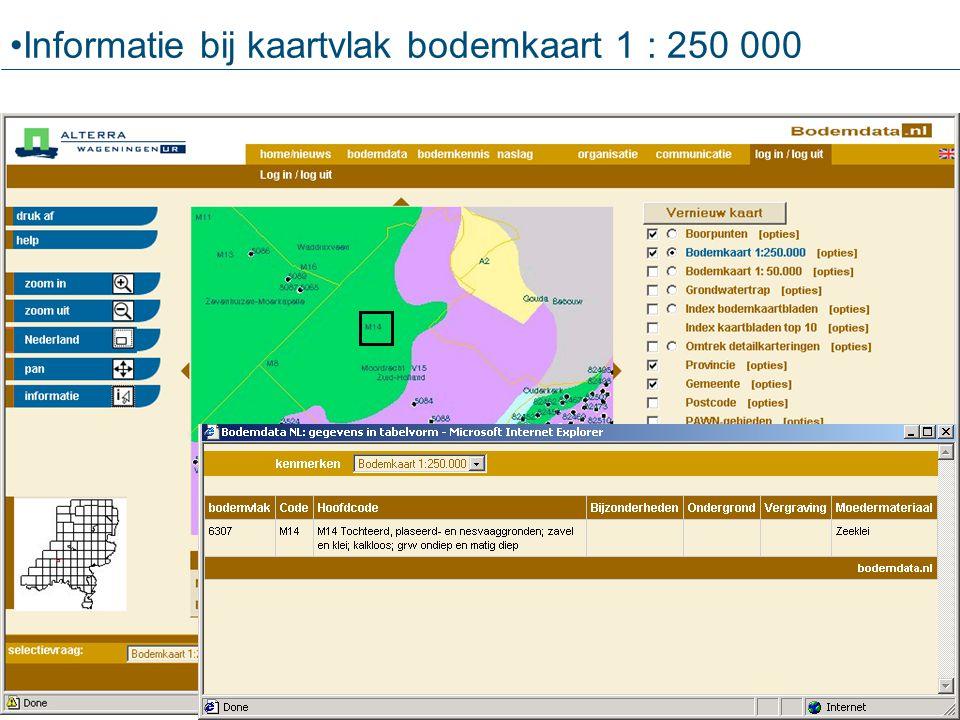 Informatie bij kaartvlak bodemkaart 1 : 250 000
