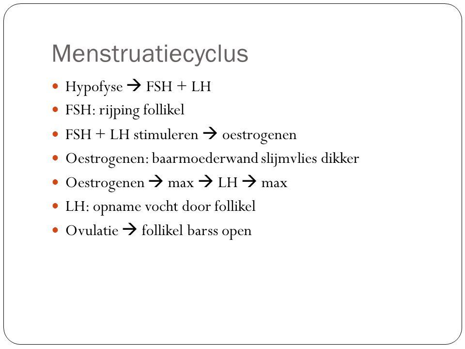 Menstruatiecyclus Hypofyse  FSH + LH FSH: rijping follikel