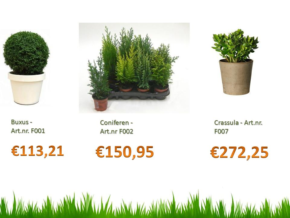 €150,95 €272,25 €113,21 Buxus - Art.nr. F001 Coniferen -Art.nr F002