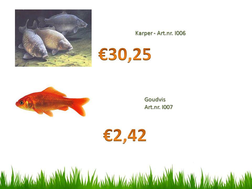 Karper - Art.nr. I006 €30,25 Goudvis Art.nr. I007 €2,42