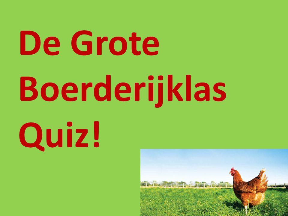 De Grote Boerderijklas Quiz!