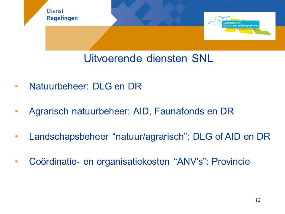 Uitvoerende diensten SNL