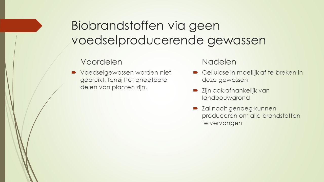 Biobrandstoffen via geen voedselproducerende gewassen