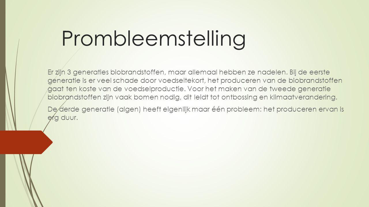 Prombleemstelling