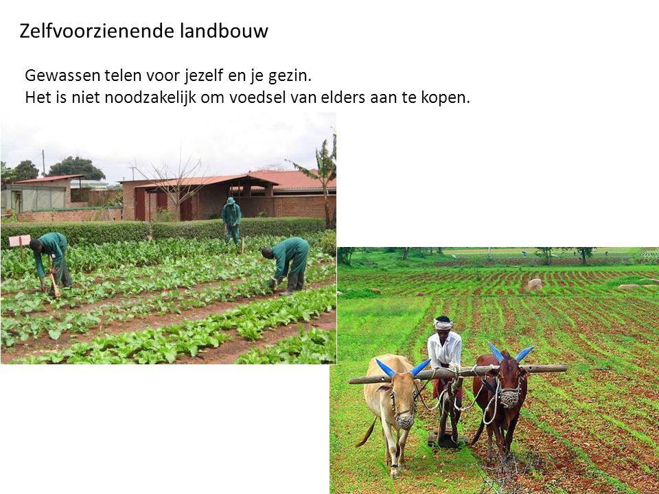 Zelfvoorzienende landbouw