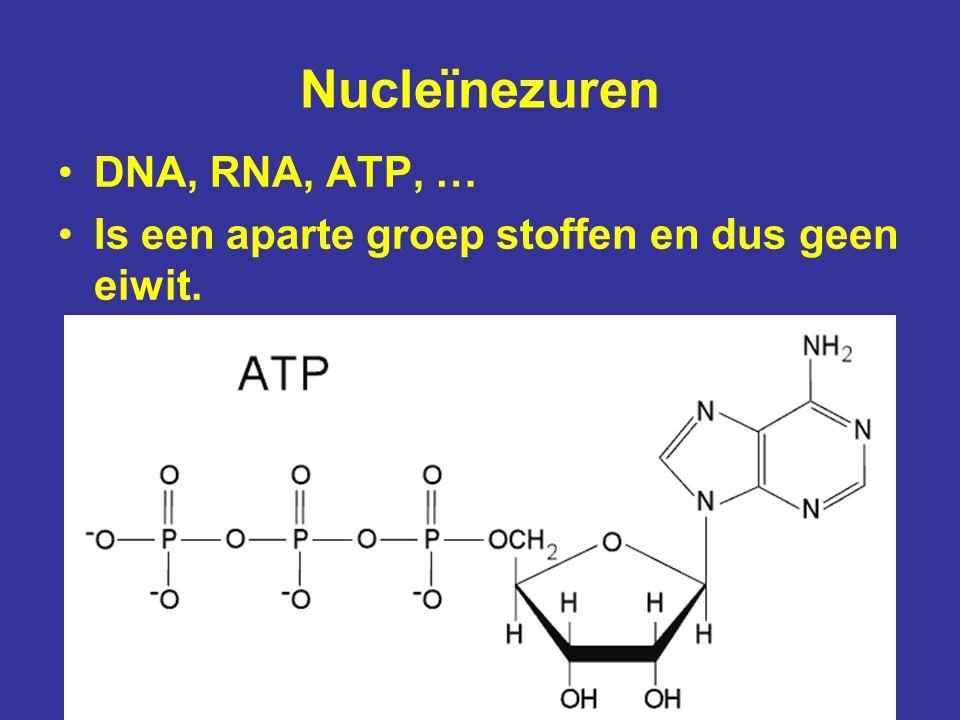 Nucleïnezuren DNA, RNA, ATP, …