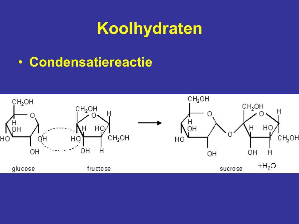 Koolhydraten Condensatiereactie +H2O