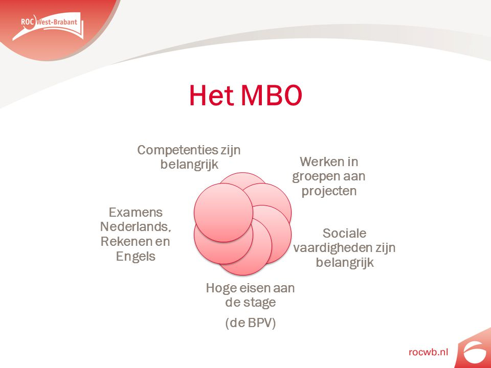Het MBO Competenties zijn belangrijk Werken in groepen aan projecten