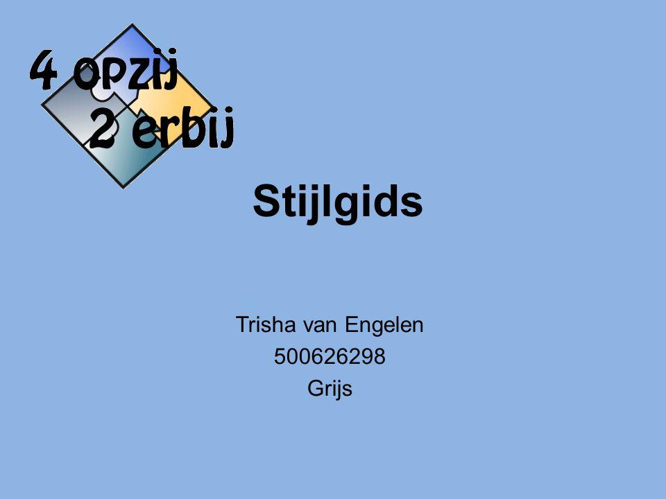 Trisha van Engelen 500626298 Grijs