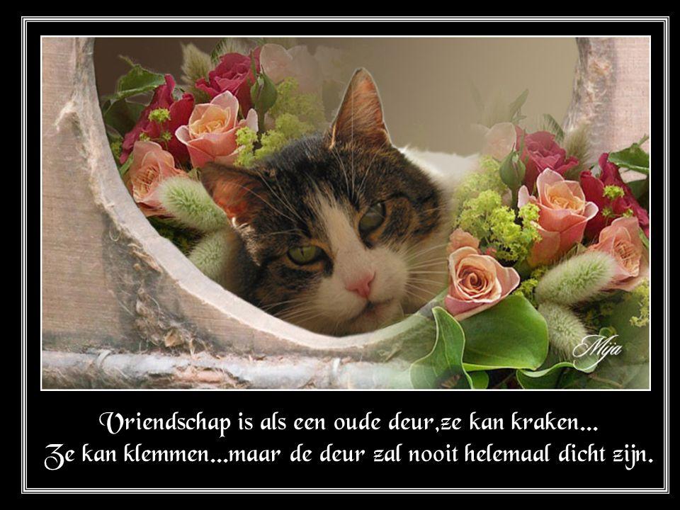 Vriendschap is als een oude deur,ze kan kraken. Ze kan klemmen