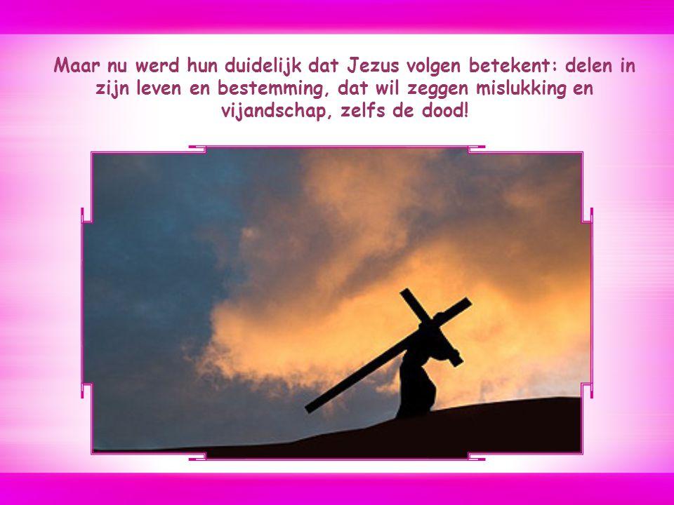Maar nu werd hun duidelijk dat Jezus volgen betekent: delen in zijn leven en bestemming, dat wil zeggen mislukking en vijandschap, zelfs de dood!