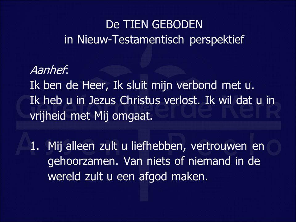 in Nieuw-Testamentisch perspektief