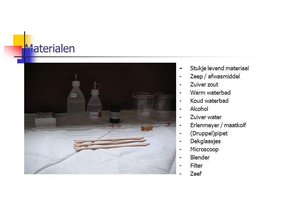 Materialen - Stukje levend materiaal - Zeep / afwasmiddel