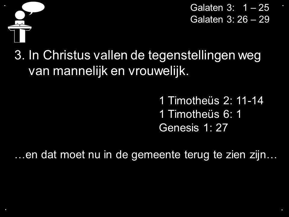 3. In Christus vallen de tegenstellingen weg