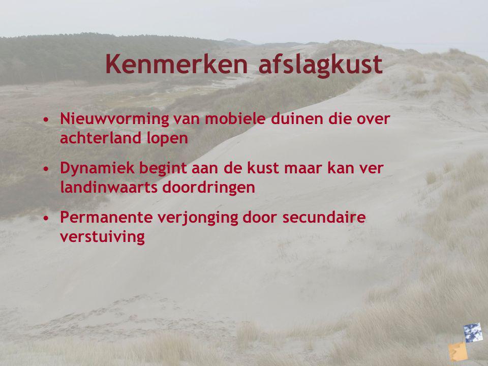 Kenmerken afslagkust Nieuwvorming van mobiele duinen die over achterland lopen. Dynamiek begint aan de kust maar kan ver landinwaarts doordringen.