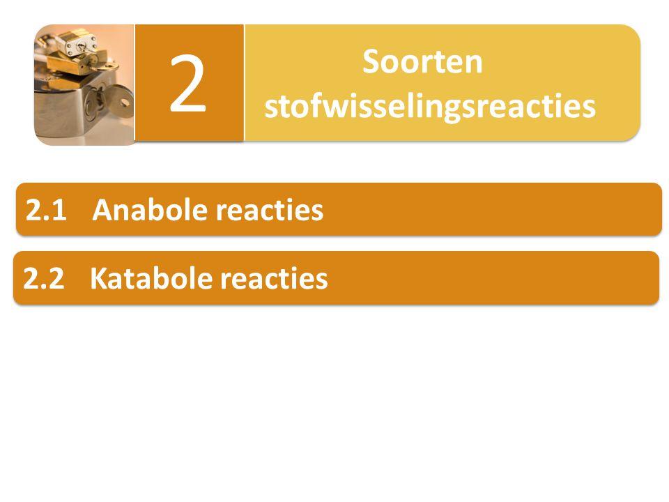 2 stofwisselingsreacties 2.1 Anabole reacties 2.2 Katabole reacties