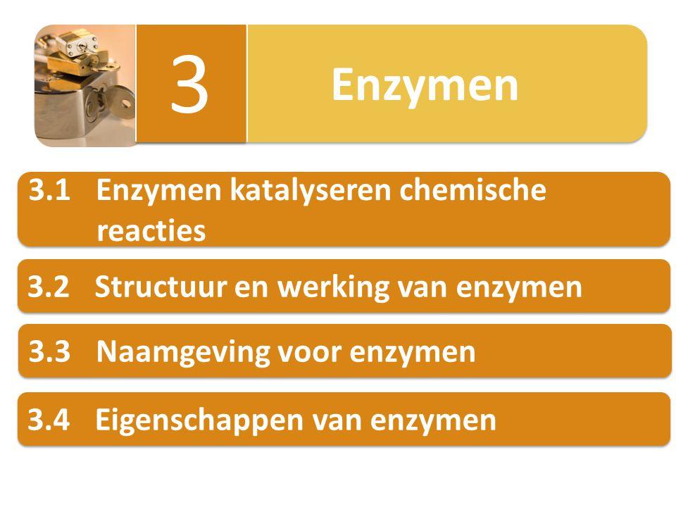 3 3.1 Enzymen katalyseren chemische reacties