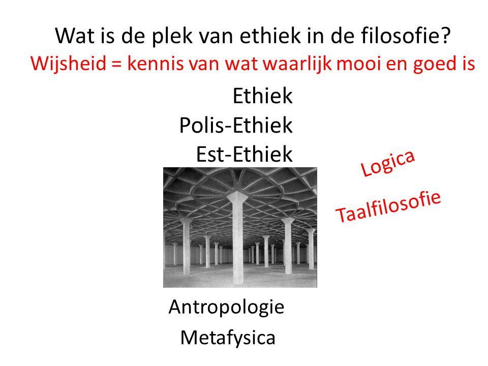 Wat is de plek van ethiek in de filosofie