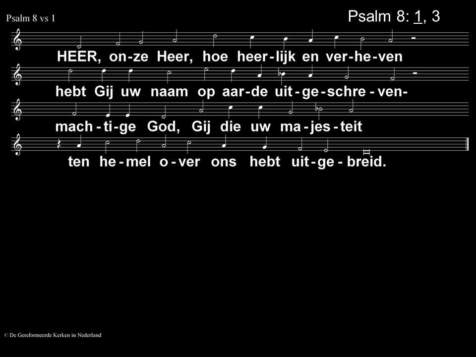 Psalm 8: 1, 3