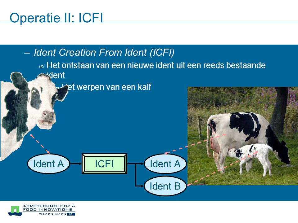 Operatie II: ICFI Ident Creation From Ident (ICFI) Ident A ICFI