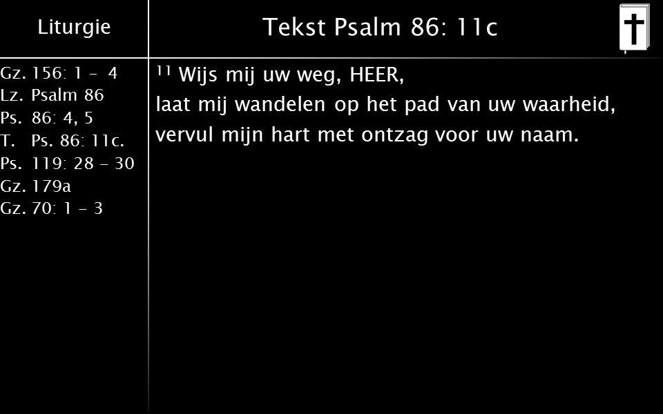 Tekst Psalm 86: 11c 11 Wijs mij uw weg, HEER, laat mij wandelen op het pad van uw waarheid, vervul mijn hart met ontzag voor uw naam.