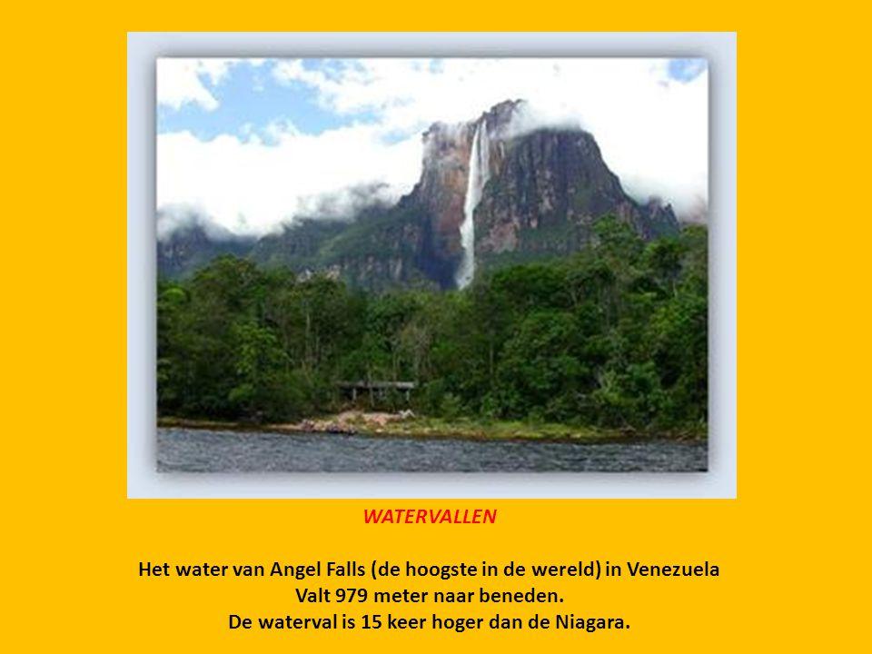 Het water van Angel Falls (de hoogste in de wereld) in Venezuela