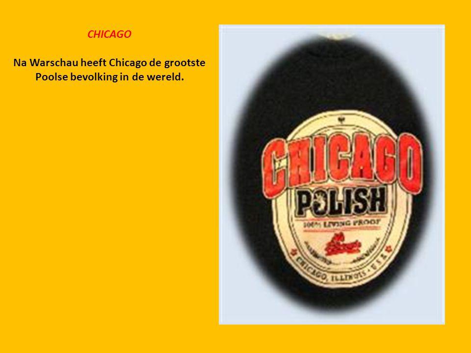 Na Warschau heeft Chicago de grootste Poolse bevolking in de wereld.