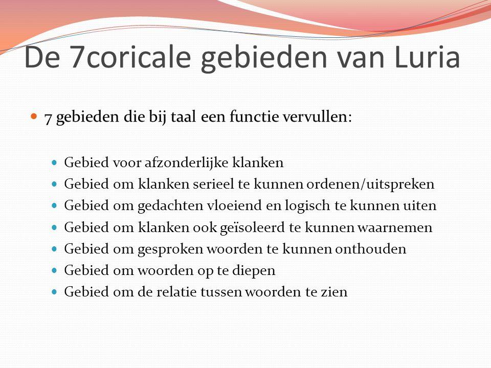 De 7coricale gebieden van Luria